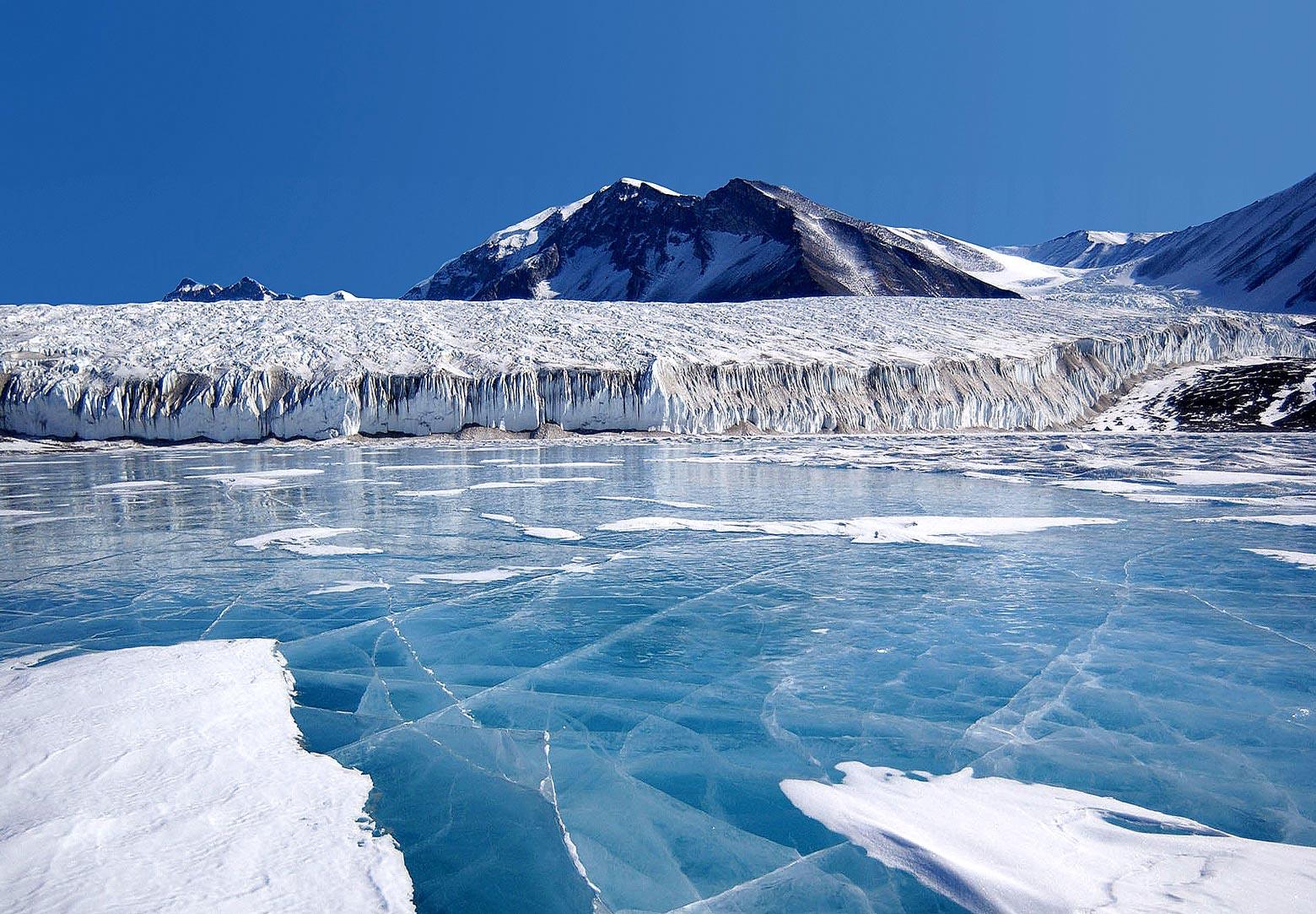 「Antártica」的圖片搜尋結果